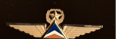 Delta  Airlines Pilot Wing  Badge Pin