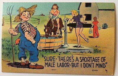 Farmer Admire's Female Workers Risque - Old Vintage Linen Funny Comic Postcard