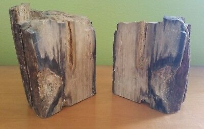 "5"" Pair Petrified Wood Bookends w/ Felt Bottoms - Unpolished Natural"