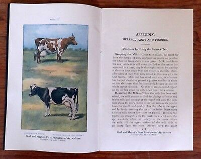 "1905 Booklet ""Greater Profits for the Farmer"" 54 pgs, Lots of Graphs, Nice Pics"