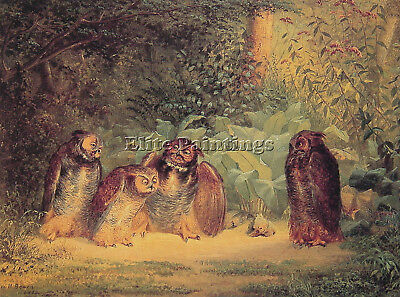 William Holbrook Beard Owls Artist Painting Reproduction Handmade Oil Canvas