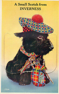 """Old Novelty Postcard """" A Small Scotch From Inverness"""" - 12 Fold Out Views"""