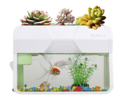 Ecology Dual Use Nano Fish Tank Aquarium with Built-in Filter and LED Succulent