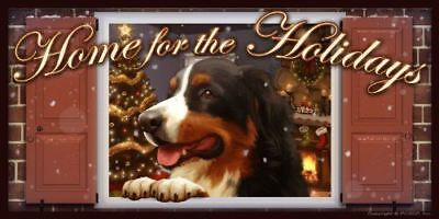 "Bernese Mountain Dog v2 Home for the Holidays ""Paws on the Windowsill"" Dog Sign"
