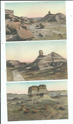 Lot of 12 Hand Colored Postcards  Petrified Forest National Monument AZ Arizona