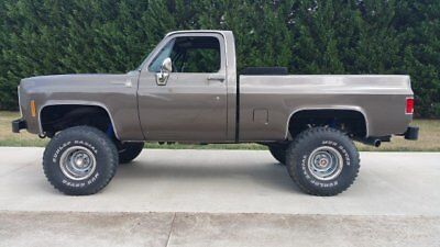 1979 Chevrolet Other Pickups SCOTTSDALE chevrolet truck 4x4