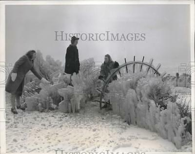 1940 Press Photo Girls With Ice Covered Shrobs And Ironwork At Chicago Lakefront