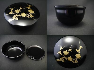 Japanese Traditional Lacquer Wooden Tea caddy Plum makie Natsume (718)