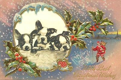 Antique Boston Terrier Dog by Curan 1800's  LARGE New Christmas Note Cards #3