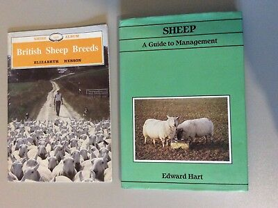 Sheep - A Guide To Management & British  Sheep Breeds - Excellent Books