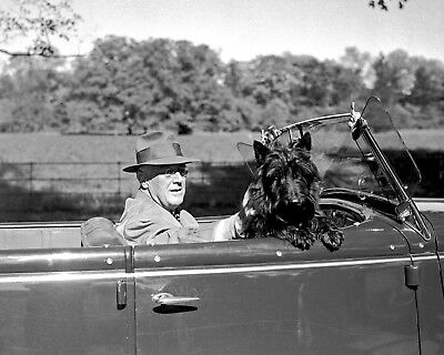 US President FRANKLIN D ROOSEVELT FDR with Fala Glossy 8x10 Photo Poster