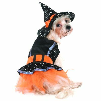 Fashion Pet Lookin Good Witch Dog Costume in X-Small, Small, or Medium