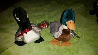 4ae6901a53a Ty Beanie Babies Jake The Mallard Duck   Loosey The Canadian Goose (Lot of 2
