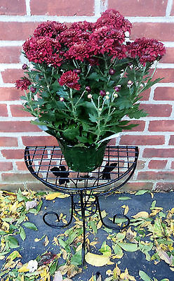 Metal Wire Plant Stand Table Half Moon Demi Lune Console Semi Circular Flowers