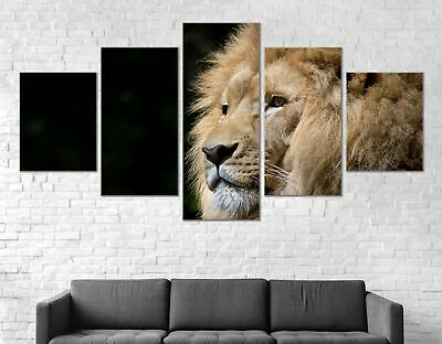 Lion King Animal Canvas Print Painting Framed Home Decor Wall Art Poster 5Pcs