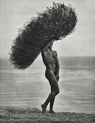 1986 Vintage 11x14 MALE NUDE Tumbleweed Body Physique Photo Gravure ~ HERB RITTS