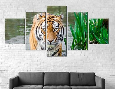 Tiger Animal Water Canvas Print Painting Framed Home Decor Wall Art Poster 5Pcs
