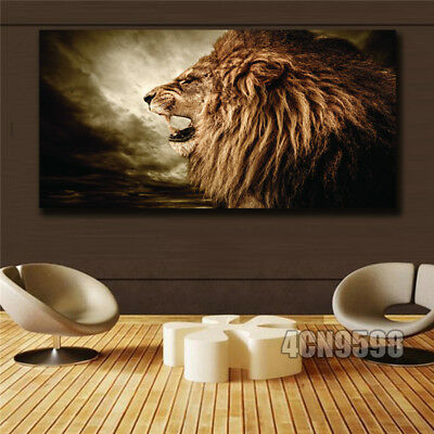 Posters prints On Canvas Lion View Huge Wall Deco Unframed k037 31inx63in