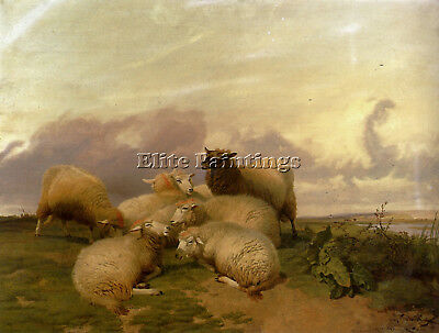Cooper Thomas Sidney Sheep Canterbury Water Meadows Artist Painting Oil Canvas