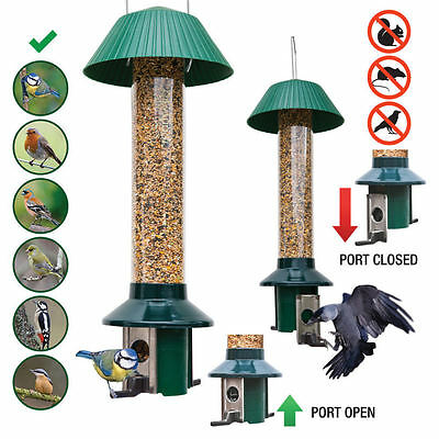 Pest Off Squirrel Proof Bird Feeder - Nyjer Seed - Stops Large Birds And Rats