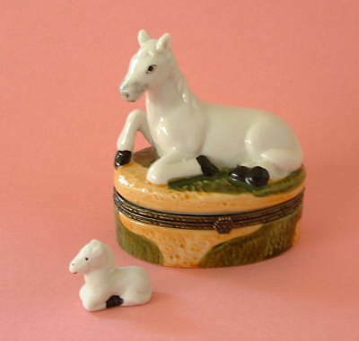 New  Handpainted Equistrian White Horse Pony Porcelain Hinged Trinket Box phb
