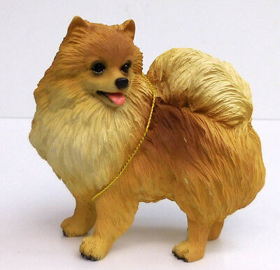 Pomeranian, Orange, Standing, Conversation Concepts, Item Dfo3A