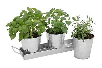 Galvanized Herb Planter Pots with Tray Set - Use on Windowsill or Outdoors