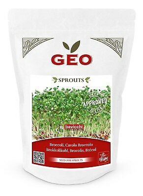 GEO Organic Broccoli Seeds for Sprouting (300g Pack)