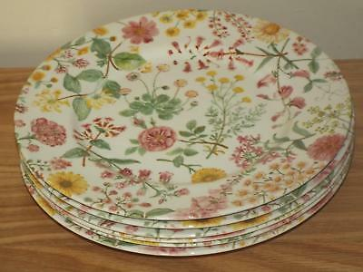 SET OF 6 Royal Stafford Hedgerow 28cm DINNER PLATES Floral Chinz NEW