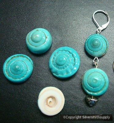 6 Turquoise Drilled Spiral Sea Shell charms Beach Cottage Decor Nautical NSS004