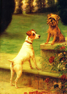 Brussels Griffon & Jack Russell Dogs Maud Earl 1902  LARGE New Blank Note Cards