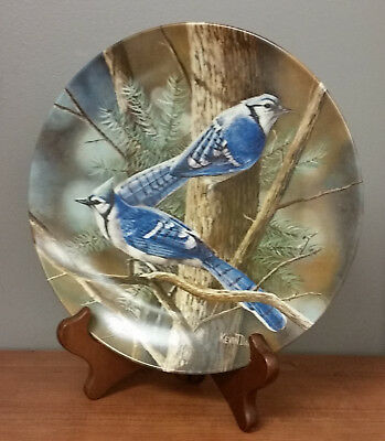 The Blue Jay Knowles Plate Encyclopedia Britannica Birds of Your Garden