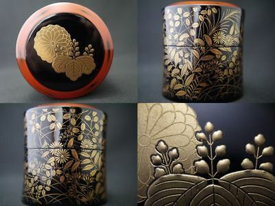 Japan Traditional Lacquer Wooden Tea caddy GORGEOUS makie Autumn Chaki (904)