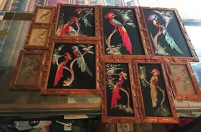 10 Vintage MCM Mexico Folk Art Birds Feather Picture Lot Framed