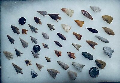 Authentic Bird Point Arrowheads Lot Of 43 Points / Arkansas Finds