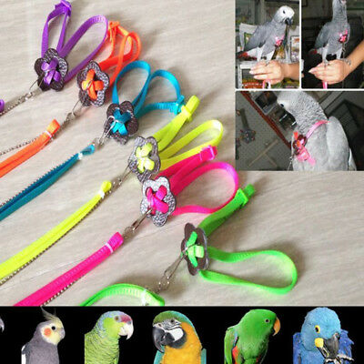 Outdoor Adjustable Parrot Bird Small Animal Harness Leash Anti-bite Collar Rope