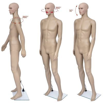 New Male Realistic Full Body Mannequin Display Head Turns Dress Form with Base