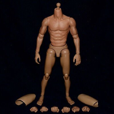 Action Figure Male Body Muscular 1:6 Scale Asian Male Perfect Collection NEW