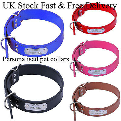 Pet Dog Cat Collar Personalised Pet Collar with Rein Padded Engraved Name&Number