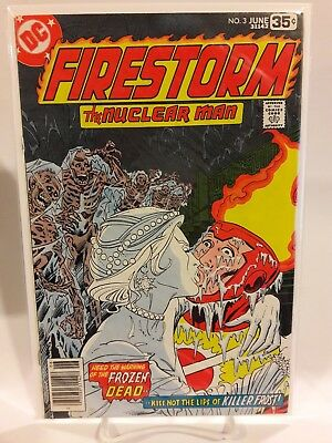 Firestorm The Nuclear Man #3 First Appearance Killer Frost Dc Comics The Flash