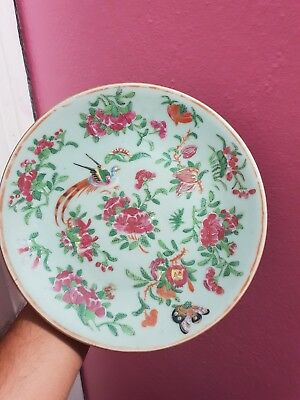 Wonderful Antique Chinese Porcelain Dish With Bird 9 in