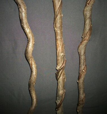 3 Raw Smaller Vine Twisted Craft Wood Carving Blank Sticks Witch Wizard Wand #60