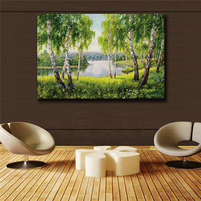 Impression Scenery HD print on canvas huge wall picture No Framed