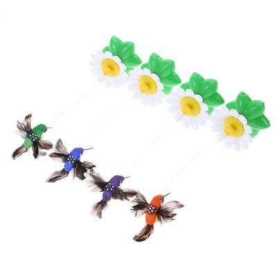 Pet Cat Toys Electric Rotating Rod Wire Cat Teaser Training Toy(Bird) BEST