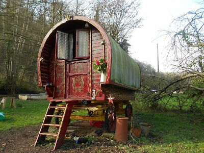 Afternoon Tea for 2 in a Gypsy Wagon, Forest of Dean