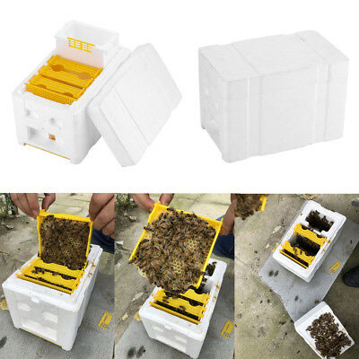 Auto Honey Beehive Frames Beekeeping Kit Bee  King Box Pollination Box CL