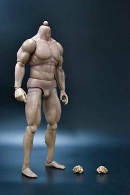 hot 1/6 Muscle Base Body action figure good fit BATMAN Bane Terminator toys