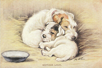 Sealyham & Puppy Dog by Lucy Dawson 1930's 8  LARGE New Blank Note Cards CUTE!