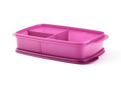 Large Divided Lunch Box New Kitchen Home Food Meals Cook Tupperware