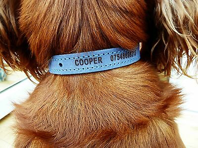 Personalised Leather Dog/Puppy Collar Engraved Premium English Leather Ancol